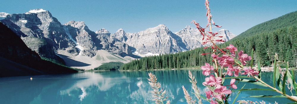 Bliss Travels International Tours and Luxury Travels in Canada