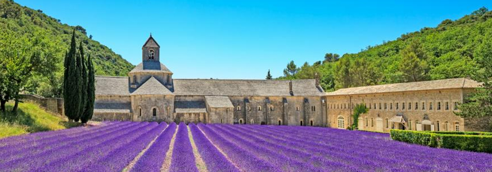 Bliss Travels International Tours and Luxury Travels in France